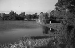 Last Roll (Nikon, 1959) (PositiveAboutNegatives) Tags: nikon rangefinder s3 vintagecamera nikons3 50mm nikkor yellowfilter 50mmnikkorf14 film analog bw blackandwhitefilm foma fomapan foma100 fomapan100 aristoedu rodinal coolscan