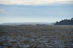 Sea glittering in sun (ilandil) Tags: sea lauttasaari sun sky blue wind