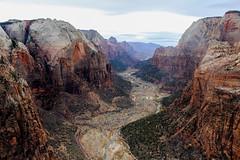 Zion Canyon, Utah. (domrhughes) Tags: canyon zion summit utah