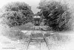 Parrallel Lines (Kool Cats Photography over 10 Million Views) Tags: train tracks blackandwhite bw vignette oklahoma trees landscape railroad railcar railroadcar