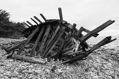 Vraket Swiks (Traumfotos Trautmann) Tags: meer ostsee schiff schweden steinstrand strand südschweden trollskogen trollwald urlaub urlaub2014 wrack öland swiks schiffswrack shipwreck wreck trolleken påstranden beach schoner ship insel island balticsea canoneos5dii canoneos5dmarkii canonef241054lisusm sverige sweden trollkungavägen