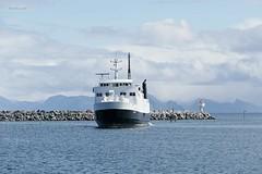 """Stetind"" (OlafHorsevik) Tags: stetind senjafergene senjaferga andfjordferga andenes ferge ferga ferry ferja ferje torghattennord thn"