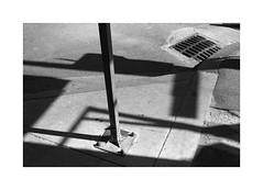 (billbostonmass) Tags: adox silvermax film 129silvermax1100min68f fm2n 40mm ultron epson v800 boston massachusetts
