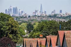 Day 183 Wimbledon lockout (Dominic@Caterham) Tags: london city suburbia trees skyscrapers tennis houses roofs stadium spectators wimbledon town sunshine summer