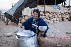 20180330-_DSC0270.jpg (drs.sarajevo) Tags: sarvestan ruraliran iran nomads farsprovince chamsatribe