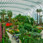 Flower Dome conservatory in the Gardens by the Bay in Singapore thumbnail