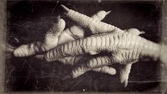 Chicken fingers -13286 (Poetic Medium) Tags: stilllife chicken snapseed feet kitcamghostbird ipod food
