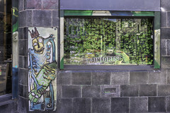 Has he lost the plot? (tootdood) Tags: canon6dmkii tibstreet manchester street art has he lost plot dontdropthebomb window green leaves poster grey building blocks