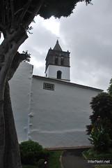 Ікод-де-лос-Вінос, Тенеріфе, Канарські острови  InterNetri  171