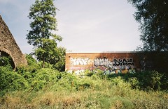 Greenway graff, from the ferry (knautia) Tags: riveravon bristolferry bristol england uk july 2018 film ishootfilm olympus xa2 olympusxa2 kodak kodacolor 200iso nxa2roll37 river avon ferry stphilipsgreenway albertbridge bridge stphilips graffiti