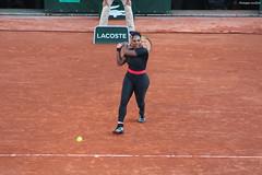 Roland-Garros 2018 : Serena Williams (philippeguillot21) Tags: tennis rolandgarros serena williams terre justaucorps paris france europe championnat joueuse player femme woman lady pixelistes canon