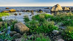 Marsh Meets Ocean (Alan Charles) Tags: ct connecticutshore hammonassetbeachstatepark hammonassetstateparkmeigspoint meigspoint seascape beach marsh ocean rockyshoreshore sea shore