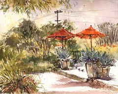 Arlington Garden (Sherry Schmidt) Tags: art painting pleinair pasadena watercolor watercolour garden gardening umbrellas pots powerlines utilitypoles trees california city landscape