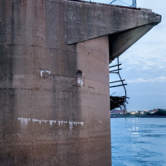 Hungry (Mike Matney Photography) Tags: 2018 canon eos6d illinois july midwest mississippiriver stanmusialveteransmemorialbridge sky sunset stlouis unitedstates us