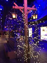 SNOWLAND (Bruna cs) Tags: snowland luzes brsail brasil gramado canela neve parque temático brunacs lights theme park snow sul do lumières parc à thème neige serra gaucha