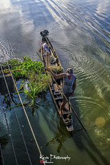 FXT29902 (kevinegng) Tags: thailand phatthalung thalenoi boat smallboat sampan boatman fisherman returninghome lightsshadows lake lakelife lakeside