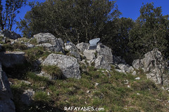 Ruta: Montmajor (1.074 m.) (Els 100 Cims) (Las Fotos de Rafa Yanes) Tags: beauty canon24105f4isii canon700d displacements extremterrain green hill landscape landscaping mountainrange nature outbreak run sky totransit tree trekking calm catalonia countryside footpaht forest gooutside hikers journeys jungle look montmajor mountain outdoor sun tomarch travel walking workingday