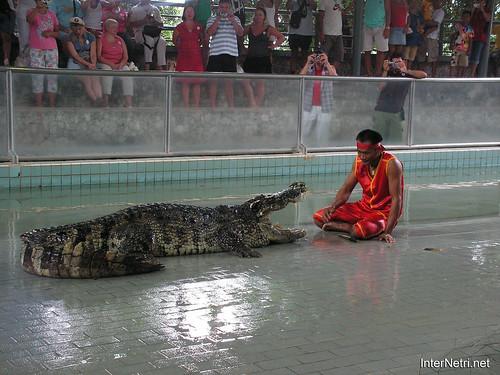 В пащу крокодилу Паттайя Таїланд Thailand InterNetri 19