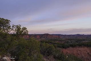 Caprock Canyon_MG_1543