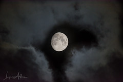 Breaking Through (benemme) Tags: clouds moon moonlight night evening gibbous nightsky sky nikond7200 walk