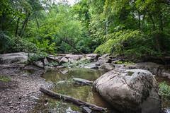 Reedy Creek, Richmond VA (adamwilliams4405) Tags: richmond rva richmondva river rocks virginia visitrichmond visitvirginia va loveva summer outside outdoors canon landscapes water explore tones nature