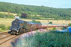 60009 at Bathampton (Glen Batten) Tags: bath somerset 60009 a4 railbathampton