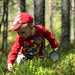 a boy in a forest looking for berries 3