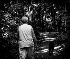 p1259 (lo.tra) Tags: fujix monochrome man dog trees light shadows lotra