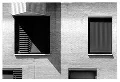 Shadow on the wall _ 2 (leo.roos) Tags: architecture architectuur window raam wall muur brick shadow schaduw noiretblanc westland westerhonk monster a7rii meyerorestegor20040 m42 zebra 1966 day200 dayprime2018 dayprime dyxum challenge prime primes lens lenzen brandpuntsafstand focallength fl darosa leoroos