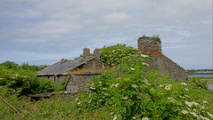 DERELICT HOUSE SCATTERY ISLAND (MAIRIN DE BARRA) Tags: ilobsterit