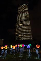 THE UPROOTED (Juan Ig. Llana) Tags: bilbao bizkaia euskadi españa es nocheblanca torreiberdrola edificio ventanas flores luz colores raices fibraóptica zb