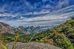Orquídea selvagem (mcvmjr1971) Tags: vermelho parque estadual três picos nova friburgo rio de janeiro brasil mmoraes nikond7000