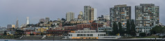 aquatic park evening panorama (pbo31) Tags: bayarea california nikon d810 color june 2018 boury pbo31 evening sanfrancisco city urban salesforce transamerica skyline aquaticpark ghirardelli square panorama large stitched panoramic russianhill