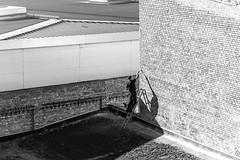 (Feininger's Cat (Thanks for 1.3 million views!)) Tags: leica leicam8 summaritm90mmf24 blackandwhite street architecture apsh summarit summarit90 leicasummaritm12490 leicam rangefinder messsucher ccdsensor