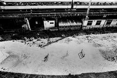 memories 659 (soyokazeojisan) Tags: olympus japan osaka bw city blackandwhite railway train bicycle shadow analog m1 om1 trix film kodak memories 昭和 1970s 1975 21mm