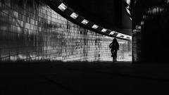 Biker in a Tunnel (Leipzig_trifft_Wien) Tags: berlin deutschland de street streetphoto streetphotography shadow shadowplay contrast dark light curve line reflection tiles pattern urban city