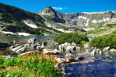 10 дни по-късно, почти от същото място. (sevdelinkata) Tags: sky mountain rock grass flower water lake peak landscape rila bulgaria