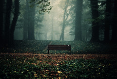 Sit a while (ewitsoe) Tags: blog ewitsoe bench sit woods forest write city poznan poland seat seasons autumn mist foresty alive life nikon d80 35mm