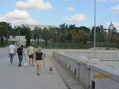 People and dogs crossing bridge! Madrid Rio : a marvel of urban planning! (d.kevan) Tags: madrid spain madridrio people trees grass dogs views royalpalace btidges almudenacathedral 1993 1755 paths stonework cypresses cedars plants parksandgardens