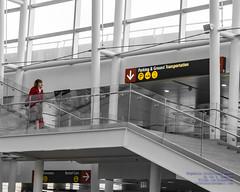 A Delta Flight Attendant Scurrying For Her Shuttle (AvgeekJoe) Tags: d5300 dslr internationalairport ksea nikon nikond5300 seatac seatacinternational seatacinternationalairport seattle seattletacomainternational seattletacomainternationalairport selectivedesaturation sigma1835mmf18 sigma1835mmf18dchsmart sigma1835mmf18dchsmartfornikon sigmaartlens washington washingtonstate airport flightattendant