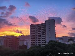 Sunset (13) #日本 #대한민국 #中國 #Sunset #Contrast #Natural #Nature #Sun #Sky #Tones #Lamppost #Shadows #Contrast #Tree #Buildings #Structure #Mountain #Jun #23 #Summer #ElParaiso #Caracas #Venezuela #2018 #chicoquick (chicoquick) Tags: 日本 대한민국 中國 sunset contrast natural nature sun sky tones lamppost shadows tree buildings structure mountain jun 23 summer elparaiso caracas venezuela 2018 chicoquick