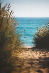 To the Sea... (steinmetznicolas) Tags: 2018 bretagne etel juin morbihan mer sea seascape beach france landscape fuji xt2