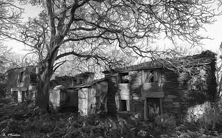 Ruins in Black and White. Ruinas en Blanco y Negro