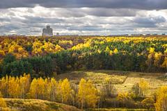 Autumn in Moscow / Московская осень (Vladimir Zhdanov) Tags: autumn october nature landscape sky forest park tree field grass city building cloud