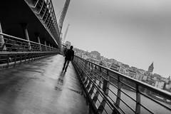 Go your own way / the path is laid before you (Özgür Gürgey) Tags: 2018 bw d750 goldenhorn nikon architecture bridge diagonal grainy lines people railings rain reflection street subway tilted istanbul photingo