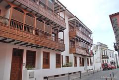 Гарачіко, Тенеріфе, Канарські острови  InterNetri  003