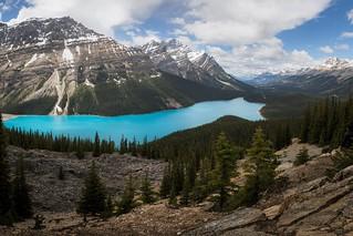 Summer hike above Peyto Lake, Banff National Park, Alberta, Canada
