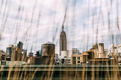 A New York Original Newbery Rosario    Instagram (newberynyc) Tags: nyc new york city ny empire state building street photography streetdreamsmag thosenewyorkstreets sony alpha artists photographers architecture tumblr radarplz radar newbery rosario newberynyc