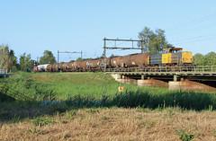 DB Cargo 6461-6469 @ Zwolle (Sicco Dierdorp) Tags: db dbc cargo serie6400 geelgrijs 6461 unitcargo onnen kijfhoek ketelwagen keteltrein meppel zwolle brug herfte wetering