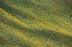 Rasht valley (M00k) Tags: tajikistan rasht valley mountains slopes